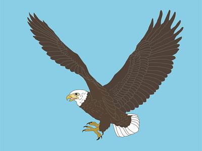 Shaheen animation icon vector logo flat illustrator illustration graphic design design art