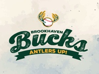 Brookhaven Busks Logo