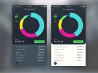 Budget Interface