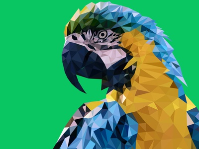 Macaw Low Poly Art fiverr.com business card flyer bookcover ebook cover vector artwork graphic designer graphic design fiverr freelancer freelance graphics illustrator digital illustration digital lowpolyart low poly lowpoly macaw
