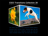 CSS3 Transitions Collection 30