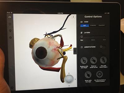 Eye Decide for Orca Health ipad ui design ios ipad design anatomy 3d render 3d render tablet eye