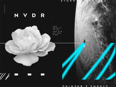 NVDR Collage 1 storm code morse flower play collage nvdr