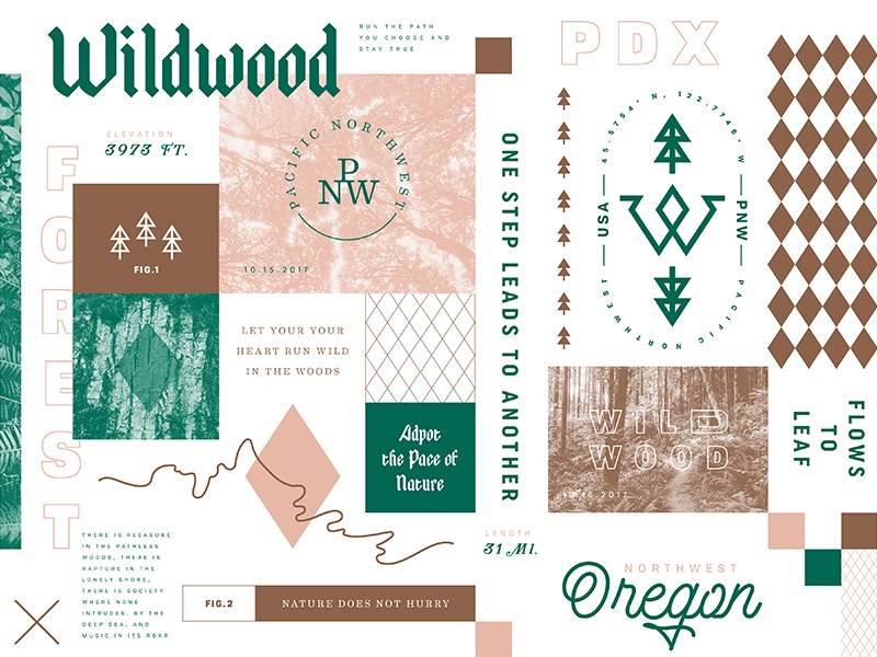 Wildwood pattern swatch