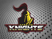 Harding Knights Logo