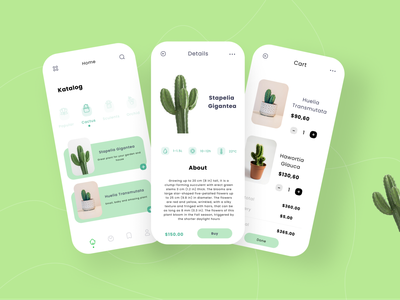 🌵 Plant shop app ui  🌵 ui uxuidesign inspirational inspirations inspired uxuidesigner ui design uiux app design app dribbble dailyui user interface uxresearch user interface design userinterface uiuxdesigner uidesign graphicdesign design