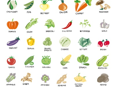 Vegan, vegetarian set of icons with vegetables. Natural colors. concept collection vector isolated image proper nutrition grass mushrooms vegetables vegetarian color branding design vector