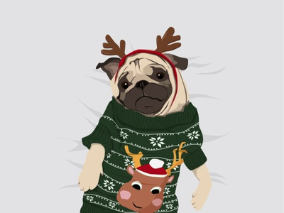 Christmas dog in a sweater sweater cute dog dog winter illustration new year vector illustration