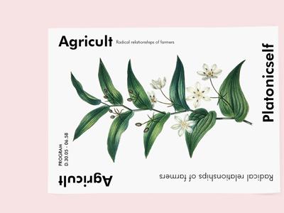 Agricult flyer branding minimal illustrative