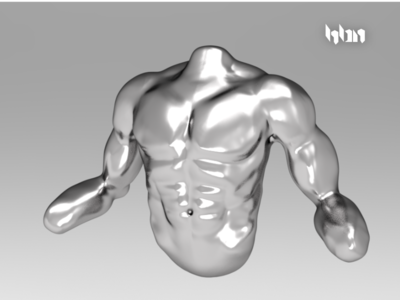 Male Torso mexico hbn sculpture torso male 3d gladiator
