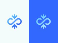 Infinity + Snowflake Logo Design