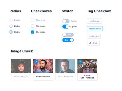 Radios & Checkboxes [UI] player card image tag switch checkbox ui dashboard elements form radio