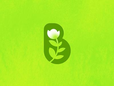 B – botanica