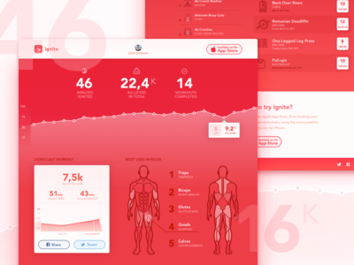 Ignite web profile concept graph stats profile anatomy physique body dumbbell barbell fitness exercise workout