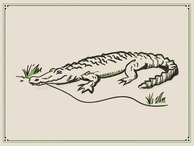 Louisiana Gator illustration retro supply co travel vector hand drawn line bayou gator swamp new orleans alligator
