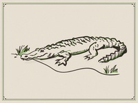 Louisiana Gator