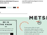 Metsi - Clean Water Initiative