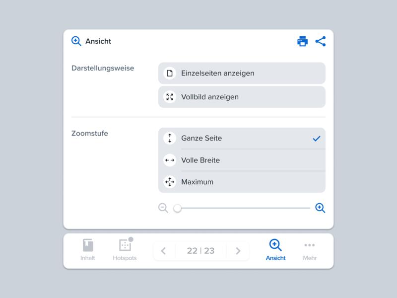 View Controls – Reader view settings options menu zoom user interface ui tabs software pagination overlay navigation minimal controls clean bottom nav bottom bar app
