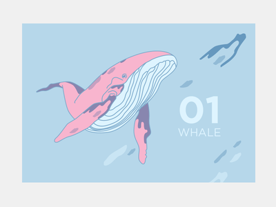whale art vector art whale vector painting illustration image