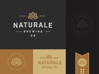 Naturale Brewing Co. Brand Exploration