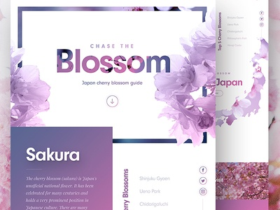 Cherry Blossom Landing Page 🌸