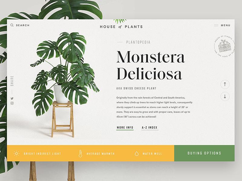 House of Plants 🌿 serif minimal leaves plant ux ui web web design website