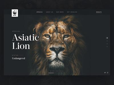 WWF: Header Concept hero header ux interface ui dark animal endangered lion wwf web design web