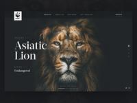 WWF: Header Concept
