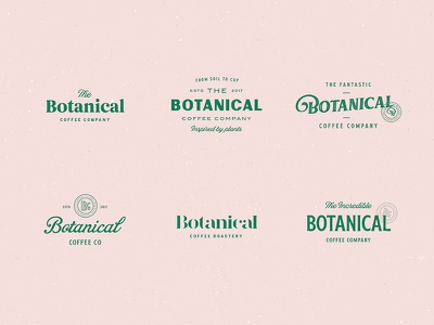 Botanical Coffee Type Explorations brand logo lettering stamp distressed vintage coffee type typography branding