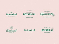 Botanical Coffee Type Explorations