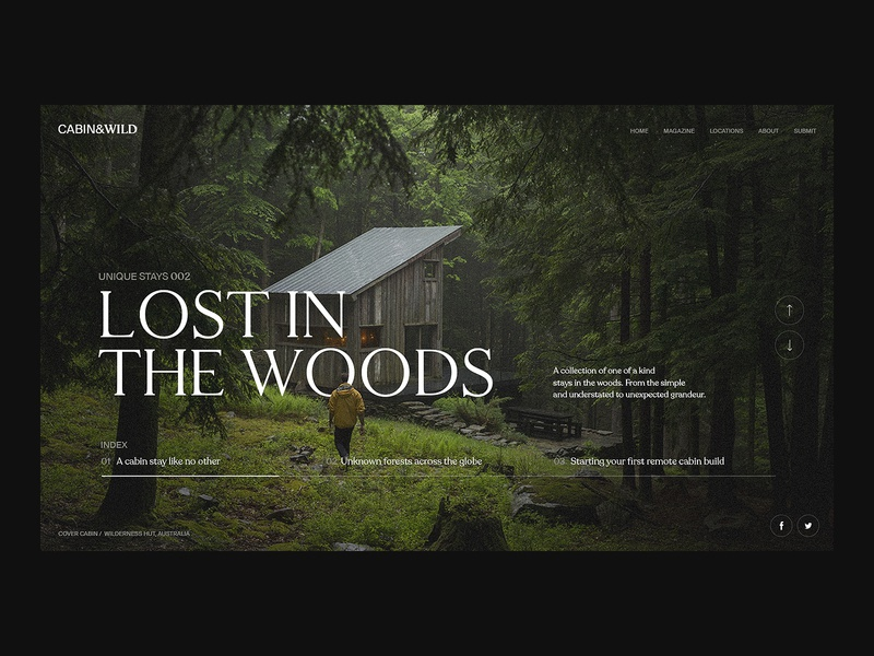 Lost in the Woods photography ui design web designer logo brand minimal typography landing page branding clean animation interface ux web ui website web design