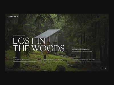 Lost in the Woods photography ui design web designer logo brand minimal typography landing page branding clean animation interface ux web ui website web design