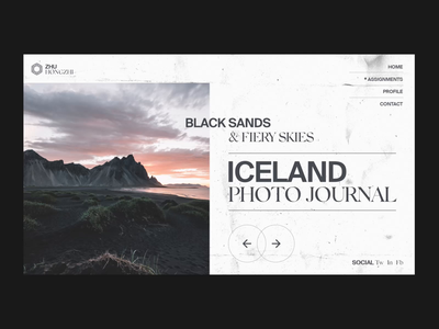 Photo Journal Animation photography ui design interaction design after effects landing page interaction branding animation interface ux web website ui web design