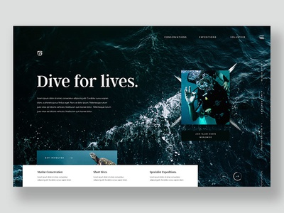 Dive For Lives adventure expedition charity plastic free ocean scuba diving homepage design web