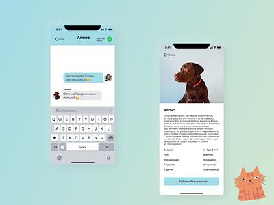 Animal shelter mobile app ui ux mobile mobile app app design animal