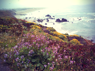 Pacific Coast vintage photography