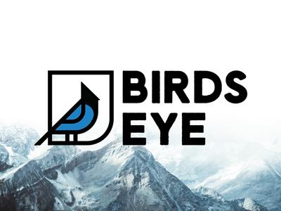 Birds Eye Drone Co.