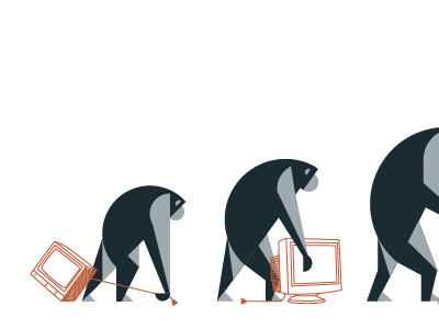 Evolution B monkeys primate evolution illustration