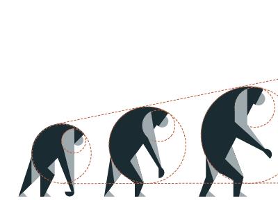 Primate B guides monkeys primate evolution illustration