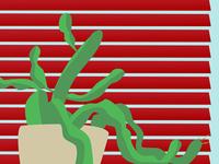 Cactus study speed vector