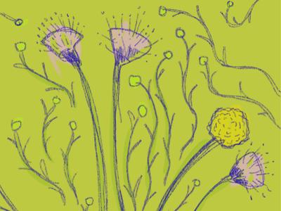Flowers n Vines