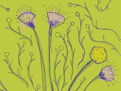 Flowers n Vines sketch flowers