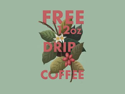 Coffee Arabica Type Integration type arabica flower coffee ipad procreate