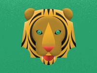 Tiger Grin