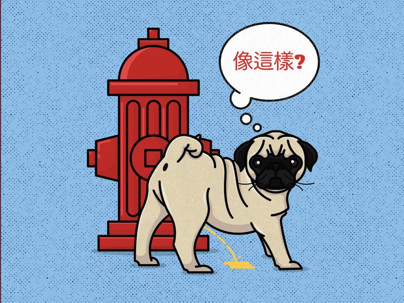 Like This? Pug Misses the Mark pet hydrant cute dog doggo pee pug
