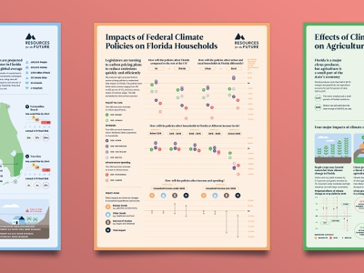 The Florida Climate Outlook - No 3 data visualisation data visualization data viz infographic science research florida editorial poster carbon tax carbon environment climate climate change policy