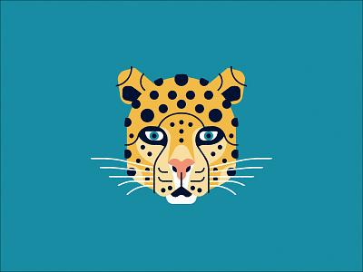 Leopard wildlife spots cat weekly warm-up dribbble animal big cat leopard
