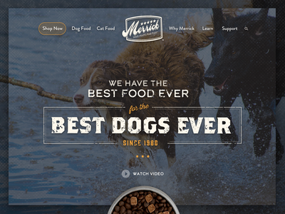 Website Hero Image type pet food dog food dog image website hero