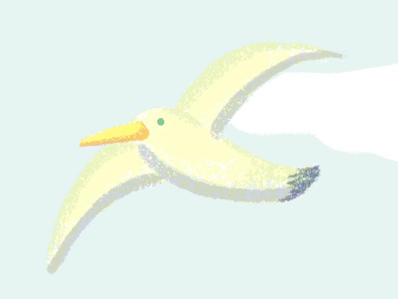 seagull 2 illustration seagull bird sky blue yellow free