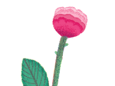 rose illustraion flower rose red green pretty
